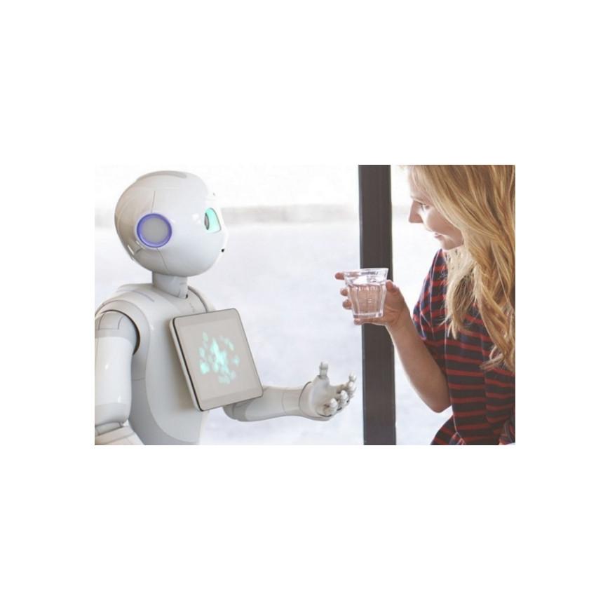Ajuda de robôs para a saúde pessoal e atividades domésticas: futuro ou realidade?